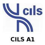 CILS A1 Italian Language exam, Bologna, Italy